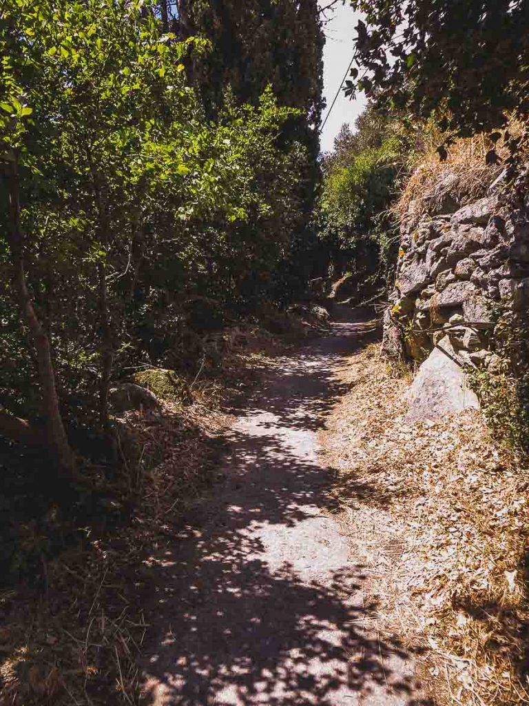 This photo shows the path leading to Pithara waterfall when hiking on Andros island in the Cyclades Greece.