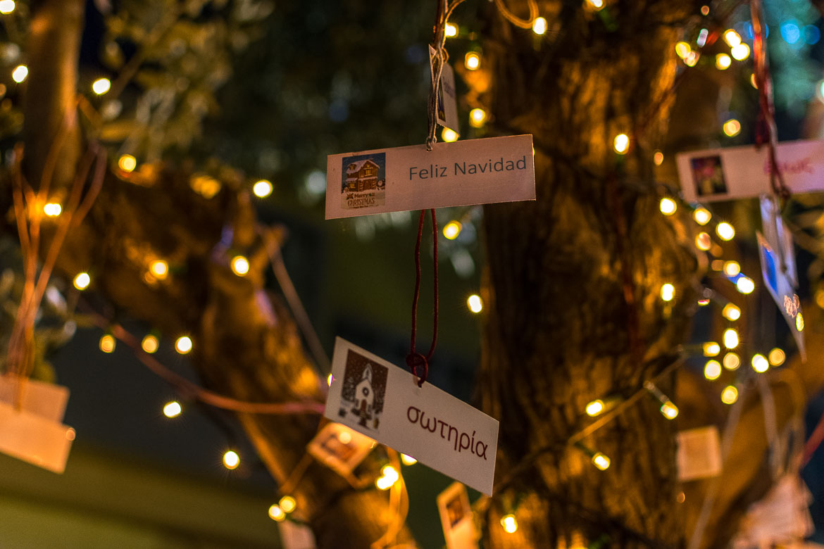 This is a close up of a tiny card that reads Feliz Navidad and another one that reads Sotiria (salvation). They are hanging from a tree in Athens Greece at Christmas.