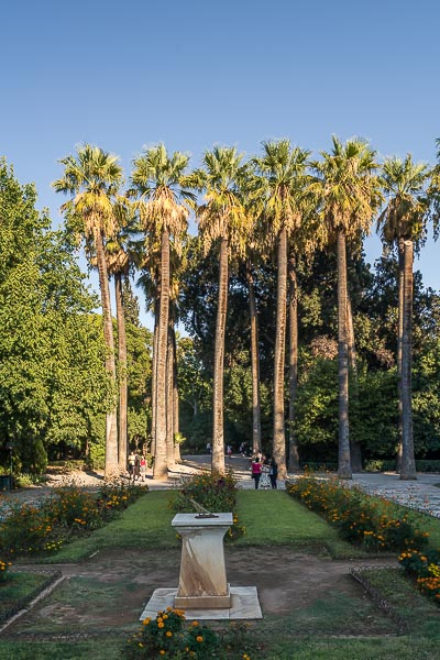 This image shows the National Garden in Athens, and more specifically, the row of palm trees that Queen Amalia planted.