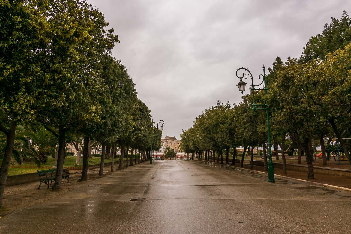 This is a photo of the main alleyway at Villa Comunale, Trani's public gardens. There are tall trees on both sides. It's a rainy day. Everything is wet.