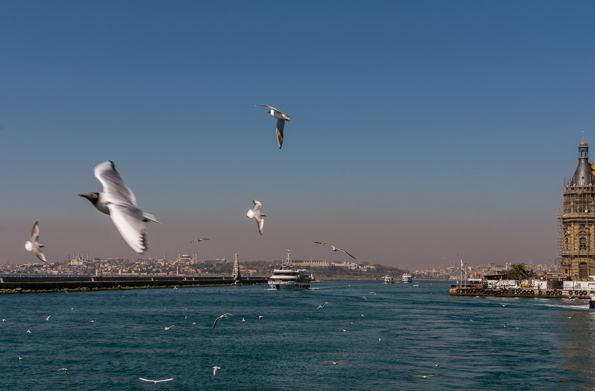 This image was shot from inside the ferry at Kadikoy ferry station in Istanbul. The image shows countless seagulls flying over the sea. The silhouette of Istanbul dominates the background. A detail of the Haydarpasa railway station building is on the left of the photo.