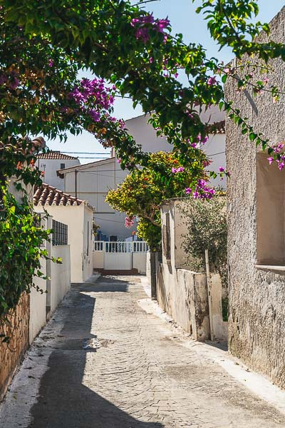This image shows a quaint alley in Elafonisos town with traditional buildings and brightly coloured bougainvilleas.