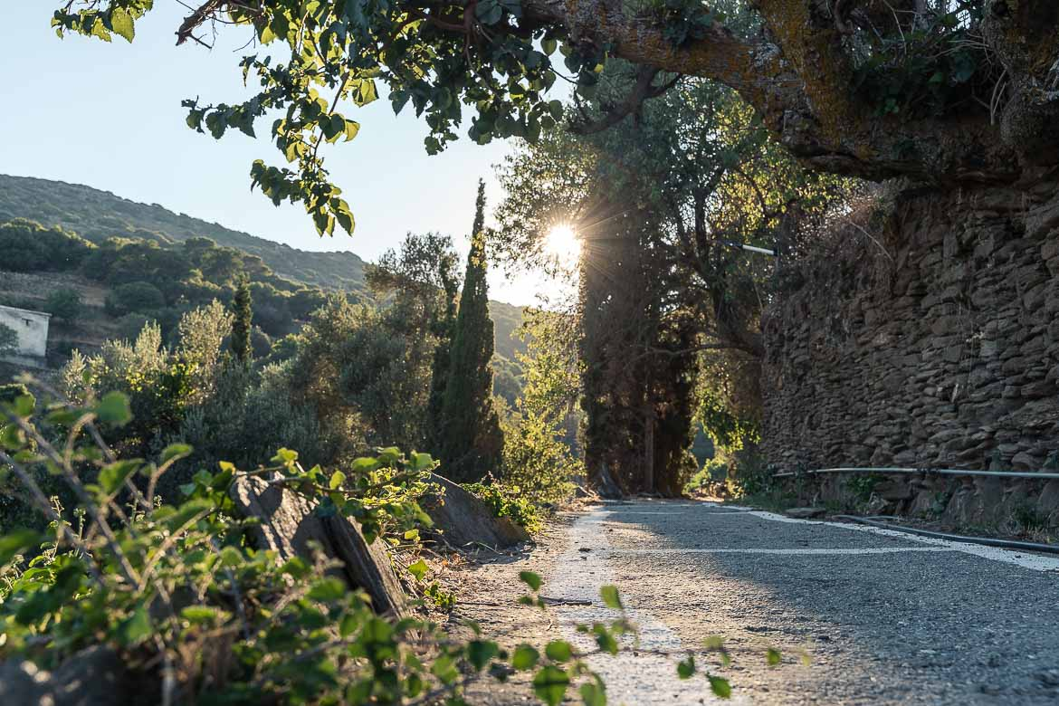 This image shows the cement path that runs along the entire village. There are cypress trees and dry-stone walls.