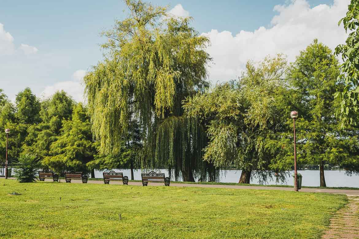 This photo shows Herastrau Park, the largest park in Bucharest, Romania. Walking, cycling or even renting a boat to explore Herastrau Lake are among the best things to do in Bucharest.