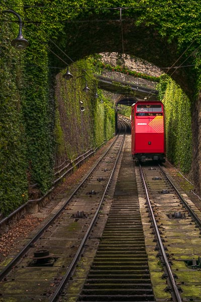 This image shows the red cable car descending towards the station of Citta Alta. It is just about to pass below an arch covered in thick greenery. It's so picturesque and the best way to move from the Lower to the Upper Town.
