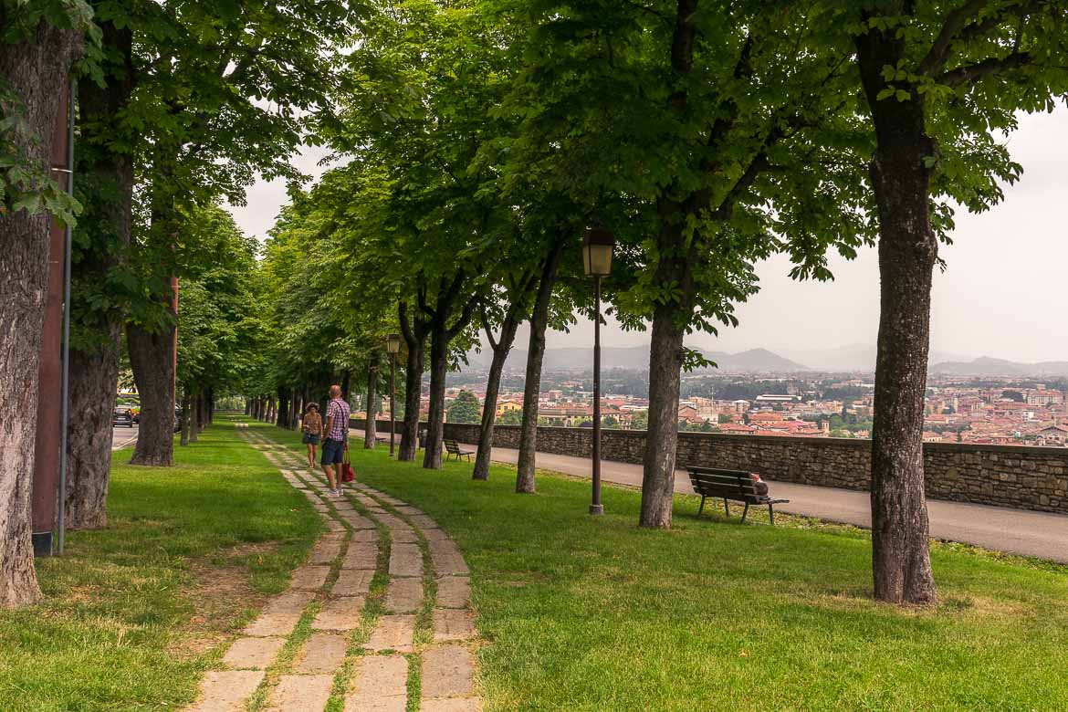 This image shows the walk along the Venetian walls in Bergamo. There is a paved path pn the grass, lined by tall trees on both sides. In the background, views to the city beyond.