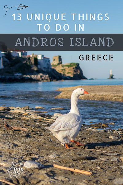 This image shows a duck walking on the beach in Chora, Andros. In the background, a line of neoclassical mansions are built on the cliff while Tourlitis Lighthouse stands alone on a rock in the middle of the Aegean Sea. This image is optimised for Pinterest. There is overlay text that reads: 13 unique things to do in Andros Greece. If you like our article, please pin this image.