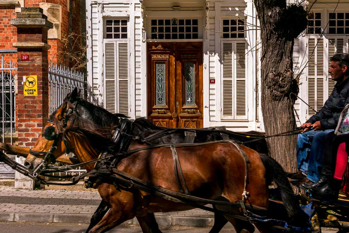 This photo shows a horse drawn carriage passing in front of a white wooden mansion.