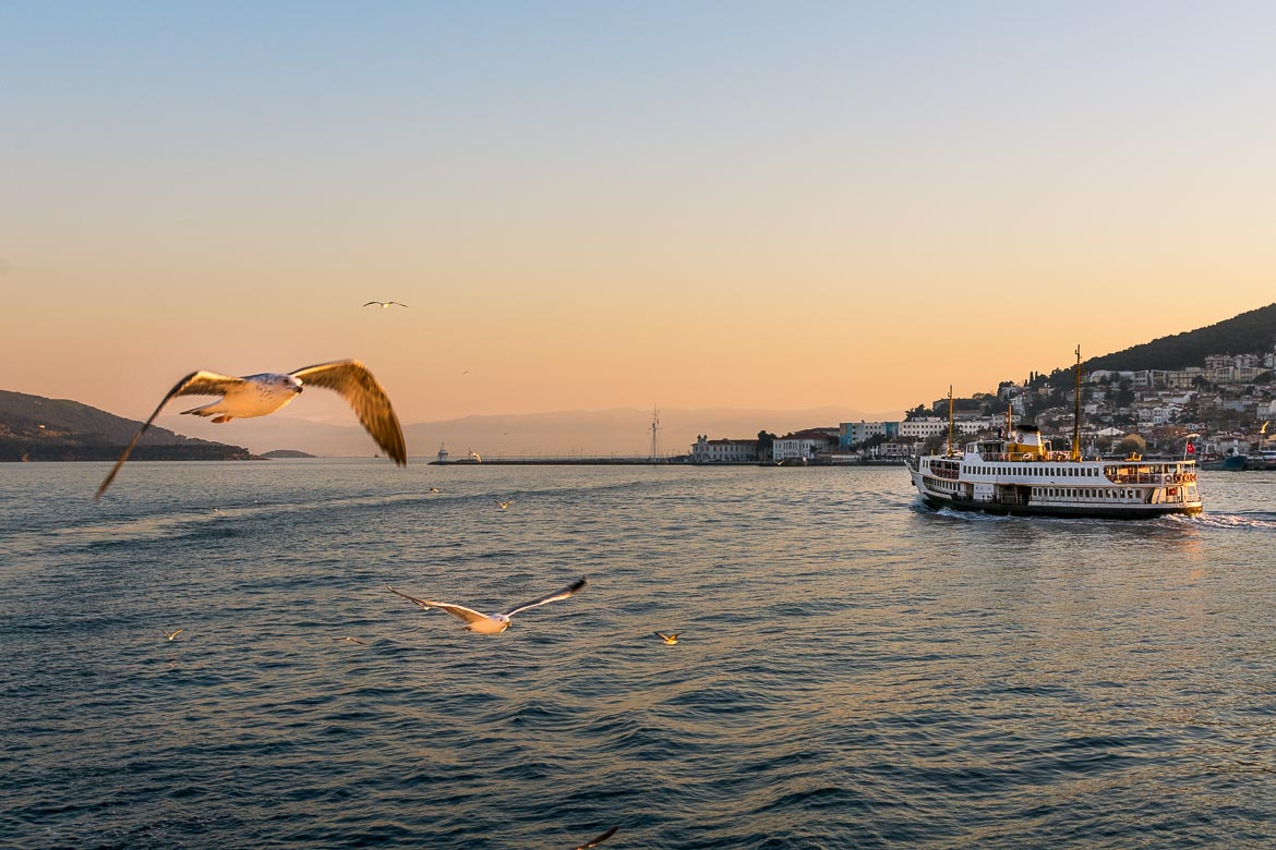This image shows the Sea of Marmara in Istanbul during sunset with seagulls flying over the water.