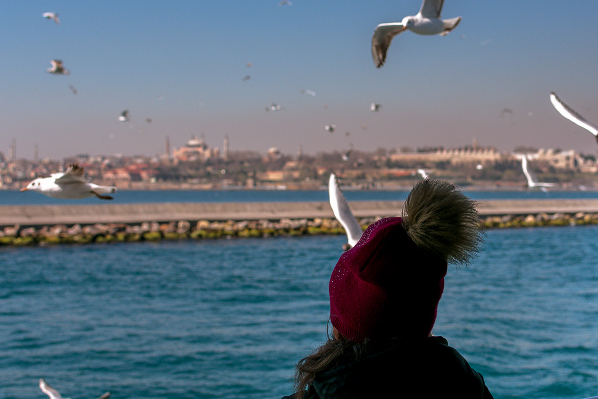 This photo was shot on board the ferry from Istanbul to the Princes Islands. It shows the back of a woman wearing a hat gazing at the city of Istanbul in the distance while countless seagulls are flying over her head.