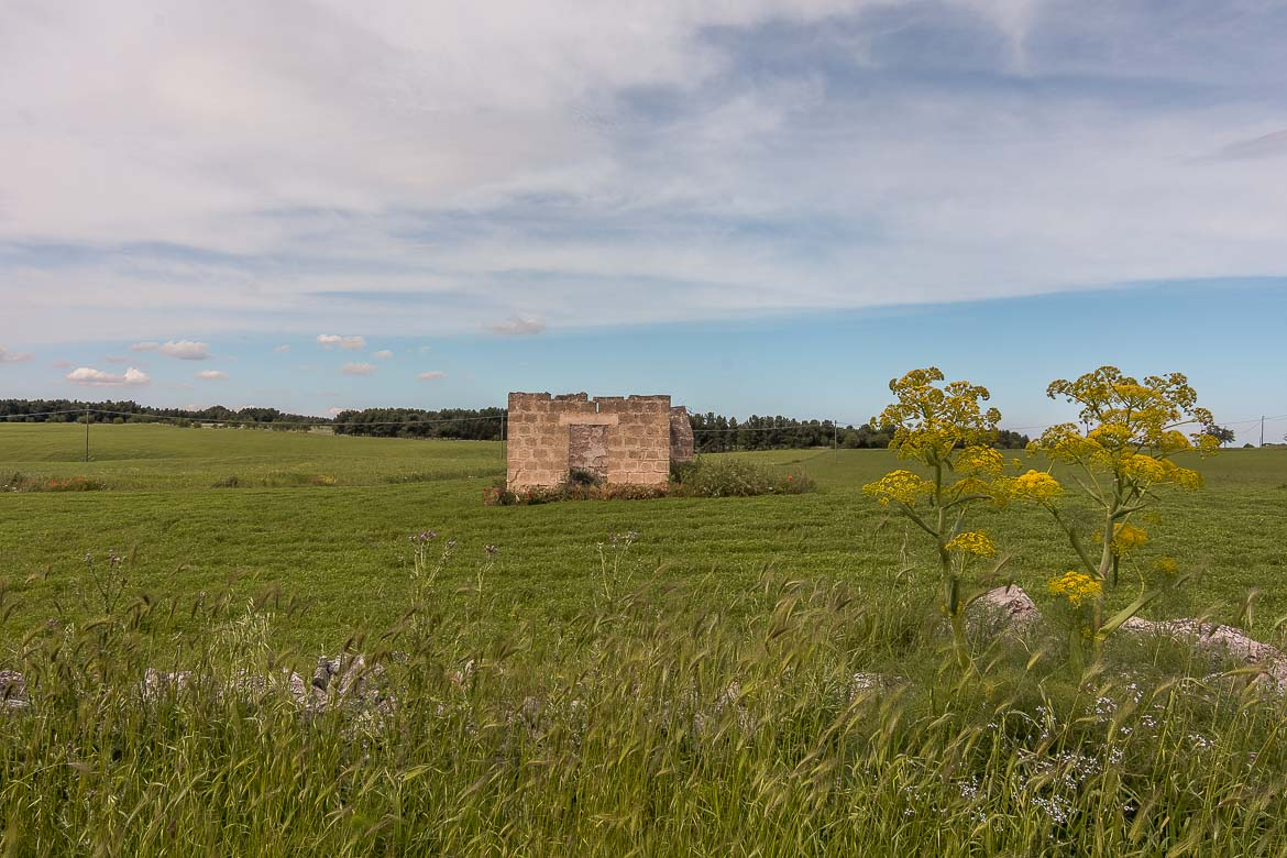 This image shows an abandoned building in the midst of stunning countryside.