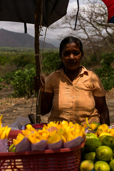This is a photo of a Sri Lankan woman selling fruit by the side of the street near DAmbulla Cave Temple.