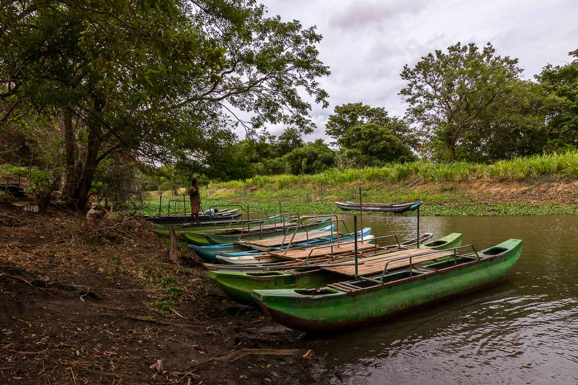 This is Habarana Lake. There are many traditional wooden boats on shore waiting to take visitors on a short boat tour on the lake.