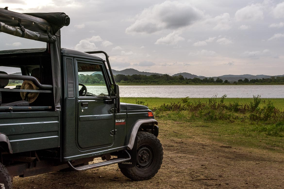 This is a photo of the jeep we took a safari on in Sri Lanka. In the background, the vast Minneriya tank.
