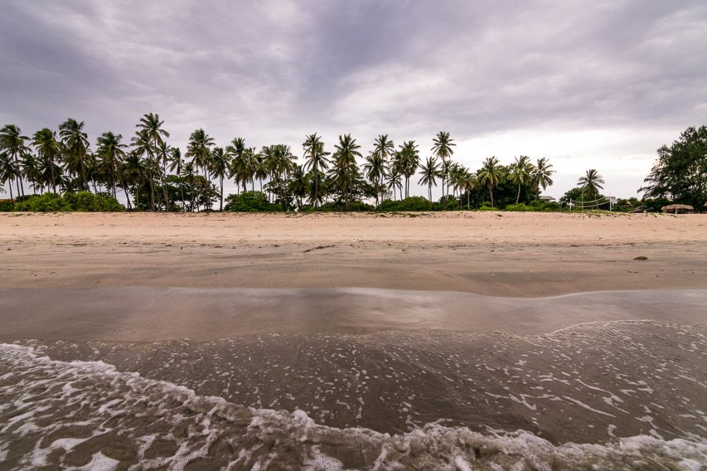 This image shows the splendid Nilaveli Beach in Sri Lanka. There is a line of tall coconut trees in the background and the photo was shot from the point where the waves meet the golden sand. This photo is used as the featured image for our article: The best Sri Lanka 10 day itinerary for first timers.
