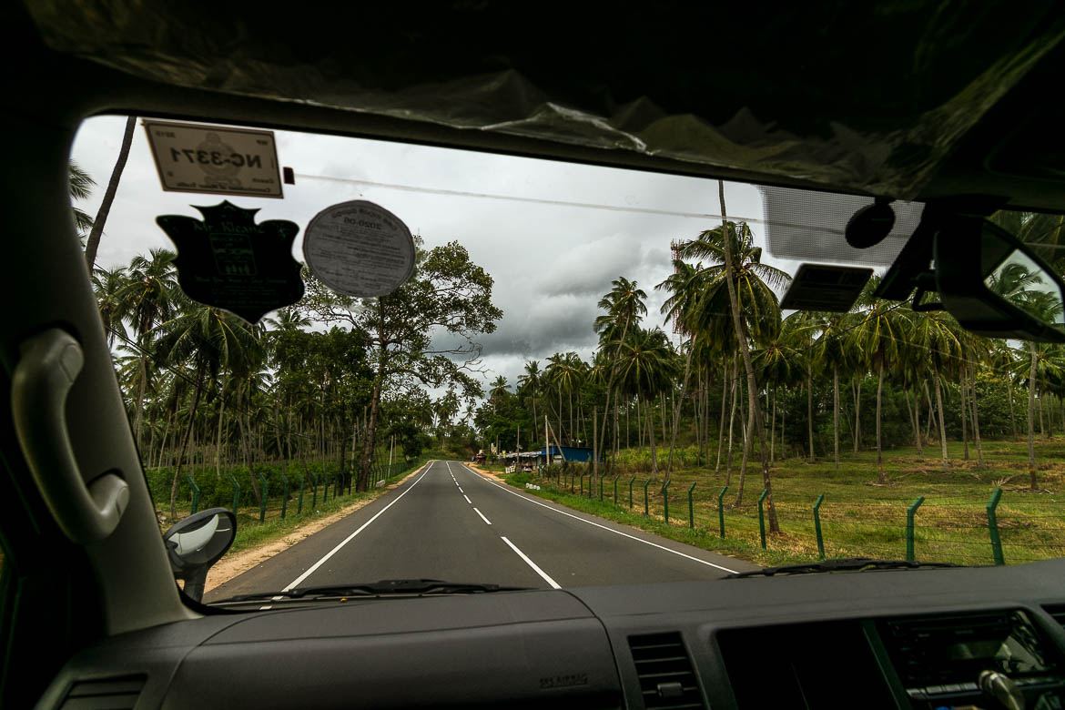 This image was shot from inside our van in Sri Lanka while we drove along a rural landscape of coconut trees and absolute charm.