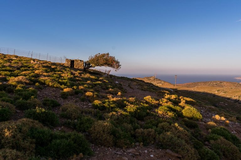 Holidays on the Island of Tinos in Greece: our Tips
