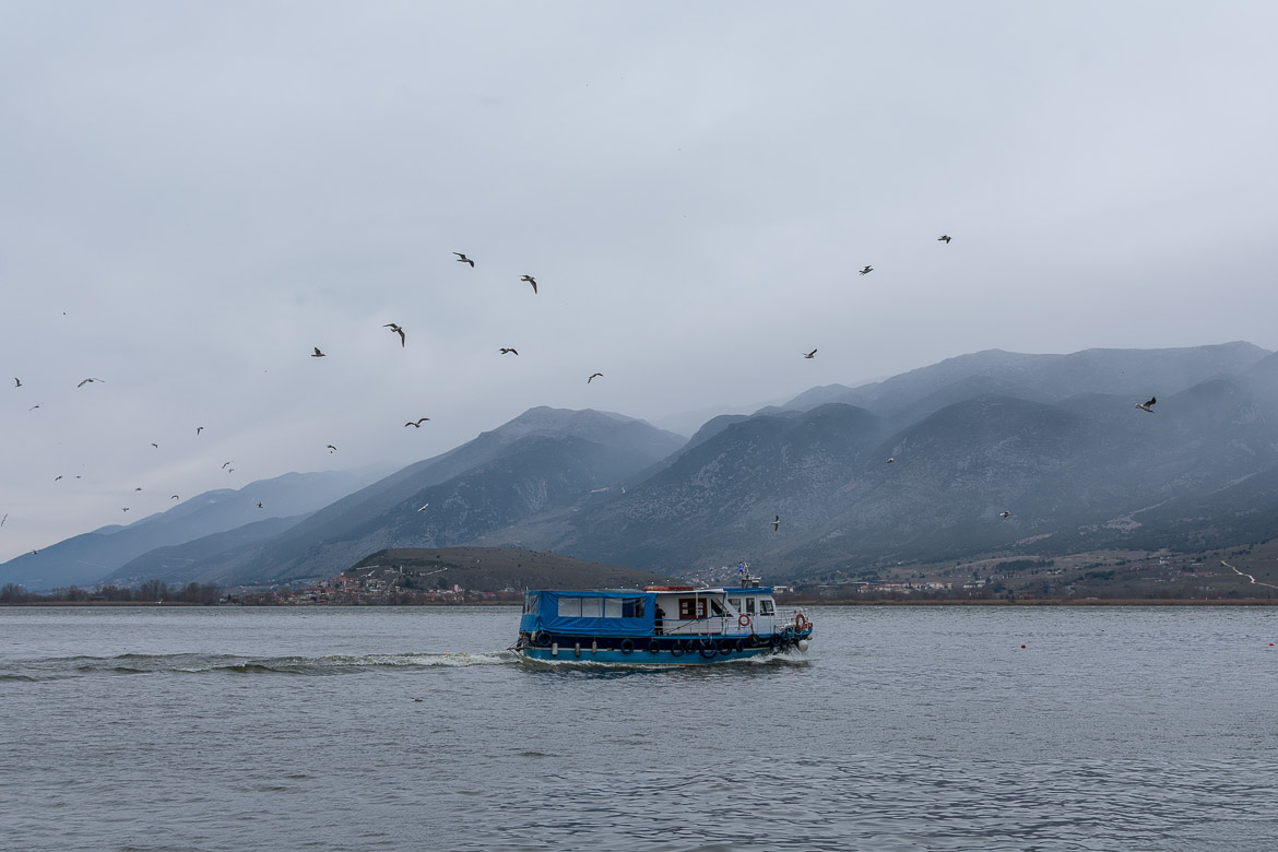 This photo shows a ferry on its way to Ioannina island. A flock of seagulls accompany its short journey.