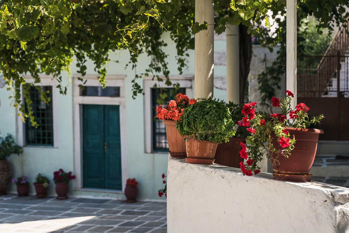 This image shows three flower pots in Koronos village. In the background, there is a traditional house with a blue door.