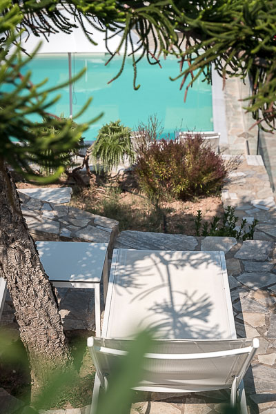 This photo shows the pool at Adonis Hotel. There is a sunchair under the shade of a tall tree.
