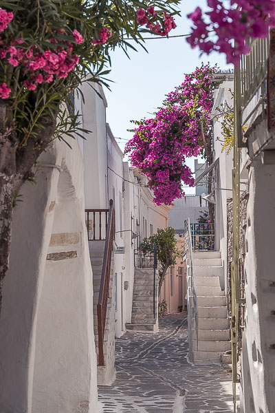This is a photo of a quaint alley in Parikia Old Town. There are charming whitewashed buildings on both sides of the street and brightly coloured bougainvilleas hanging over them.